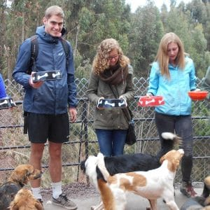 Hondenopvang